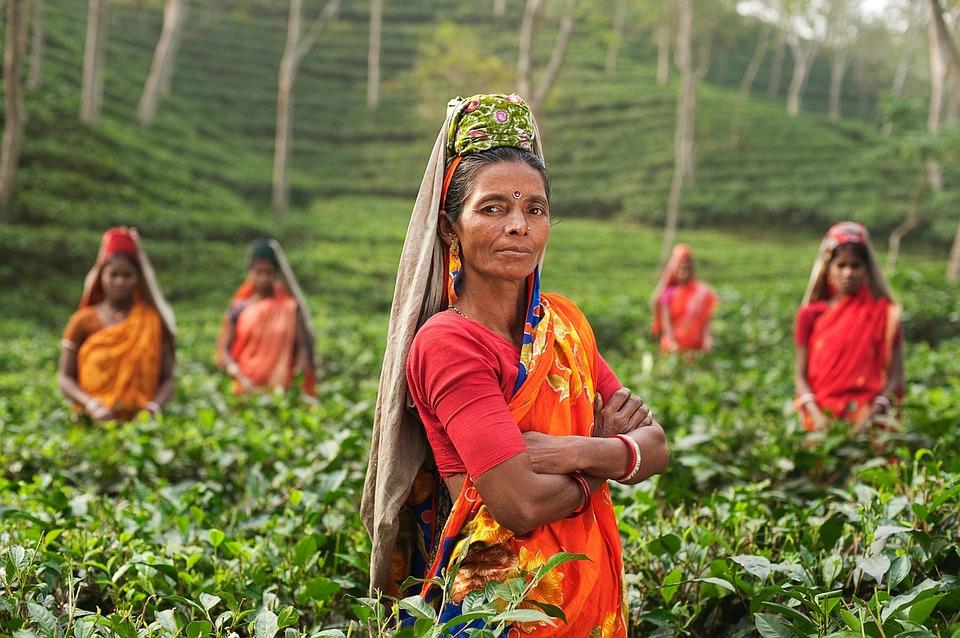 Эксперты обеспокоены повальной модой на осветление кожи в Индии